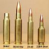 Competition Cartridges 30-06 222 Rem 6PPC 300 Ackley