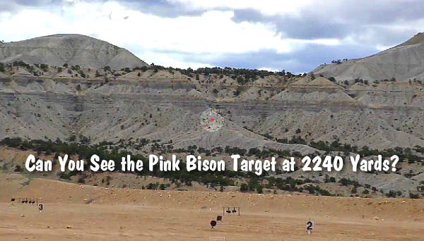 World Record Iron Sights K31 Buffalo bison Utah