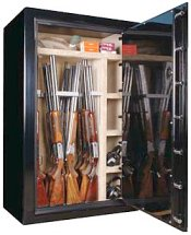 gunsafe gun safe