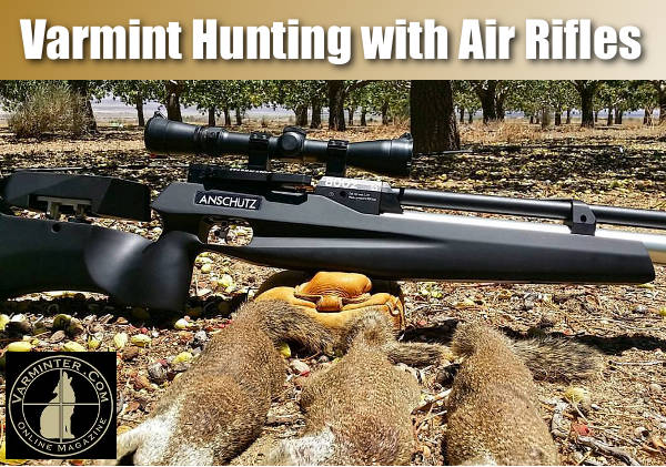 Anschutz Anschütz 8002 S2 Black Air Hunter airgun air rifle moderator squirrel hunting