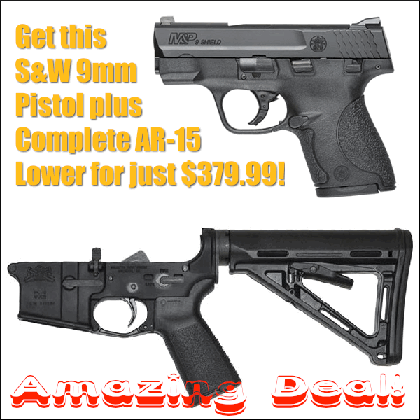 Palmetto State Armory S&W Shield 9mm pistol AR15 AR AR-15 complete lower assembly