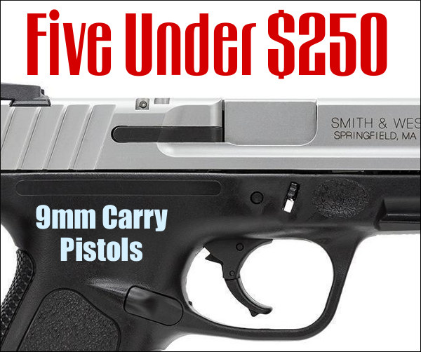 Carry pistol $250 bargain ccw handgun review discount sales