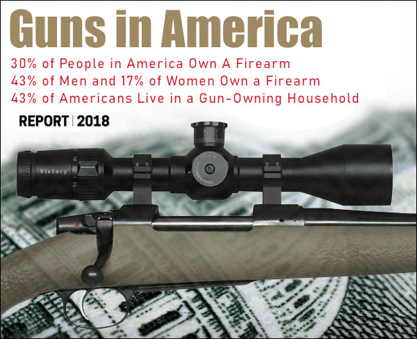 Gun ownership BATFE NSSF report statistics