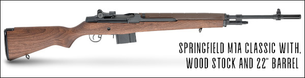 Ray Gross M1A service rifle