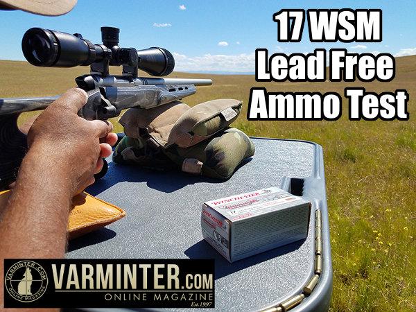 17 WSM rimfire ammo test