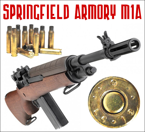M14 rifle Springfield M1A camp perry Shooting Sports USA