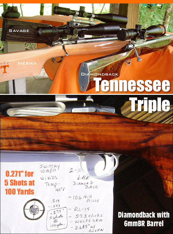 Varmint rifles 20 BR Stiller Diamondback 6mm Dasher