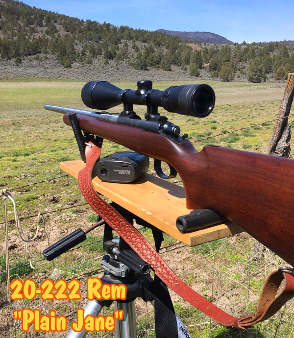 favorite Varmint rifle Sunday Gunday Pacnor .222 Remington 20-222 Plain Jane varmint Rem 700 remington rifle