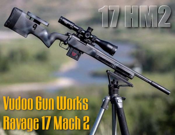 vuduoo gun works .22 LR rimfire .17 HM2 17 Mach 2 hornady