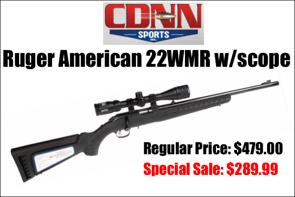 Ruger american rimfire .22 WMR 22 WMR rifle with Bushnell