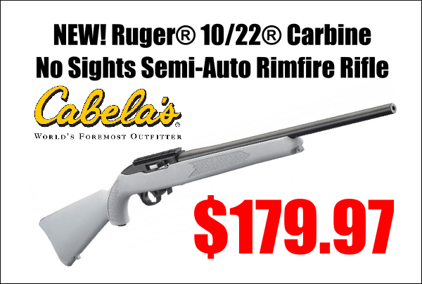 ruger 10/22 carbine sale