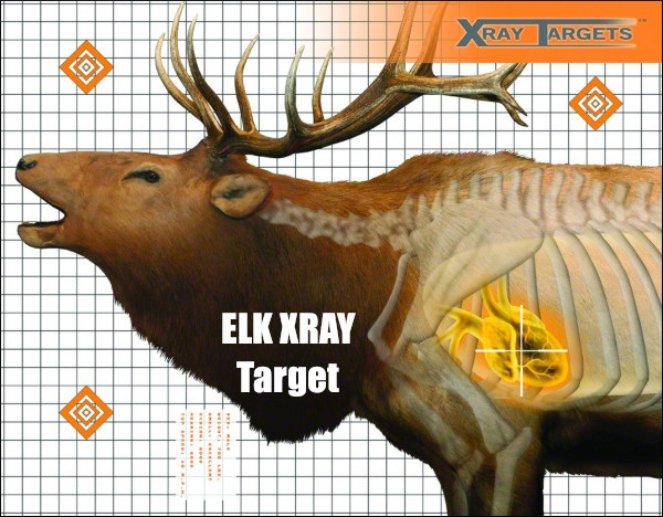 picture about Printable Deer Targets called No cost Goals « Day-to-day Bulletin
